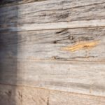 Weathered-Grey-Barnsiding